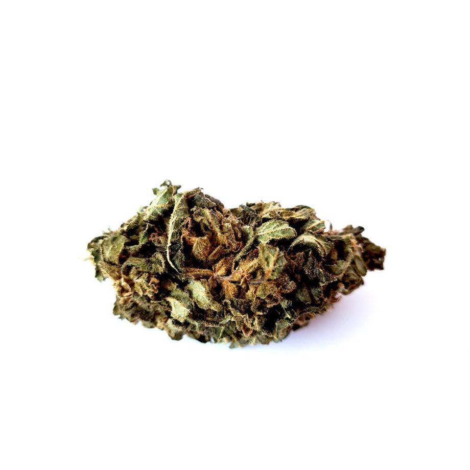 Gorilla Glue CBD Bud