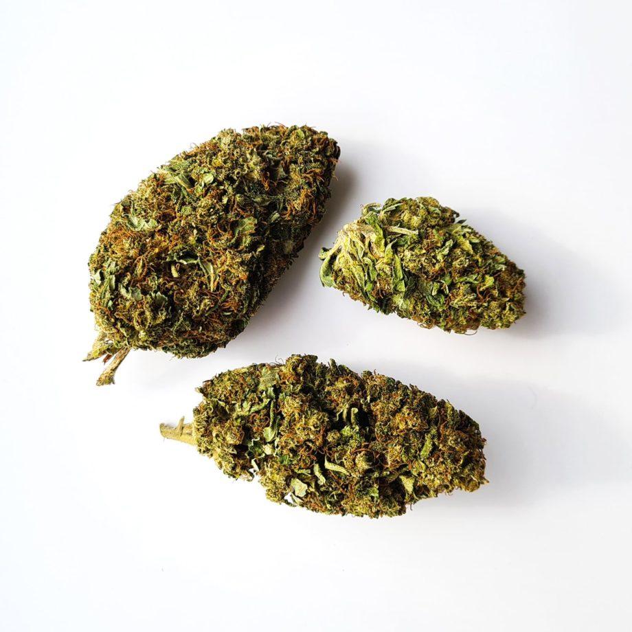 Mango Kush CBD Buds